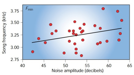 When there are high background noise levels great tits adapt by singing at a higher pitch. Figure from Slabbekoorn and Peet (2003).